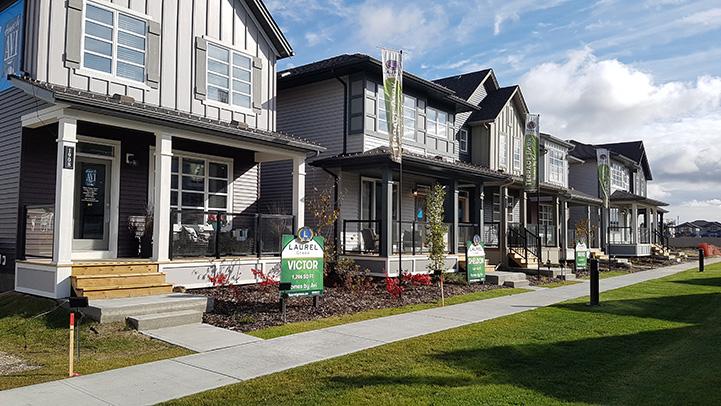 south edmonton homes